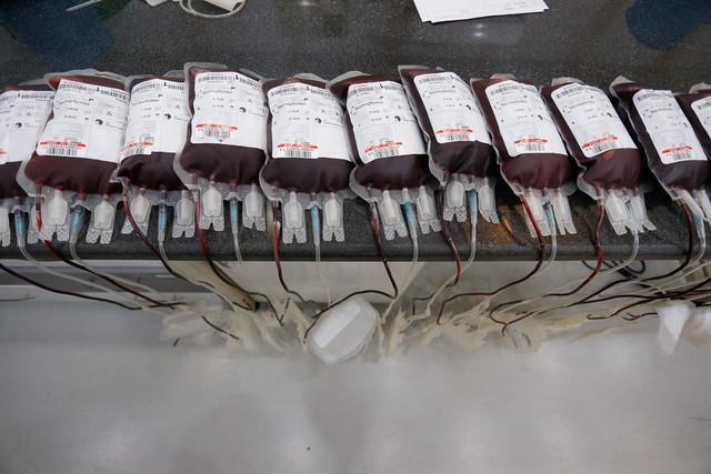 آدم هایی که خونشان از بقیه رنگین تر است