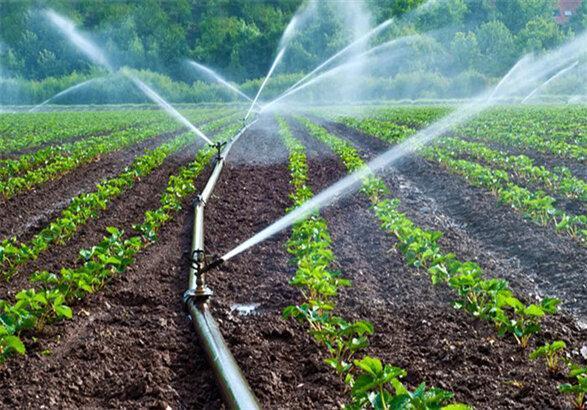 کدام کشورها بیشترین و کمترین ردپای آب را دارند؟