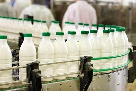 افزایش 15 درصدی تولیدات شیر چهارمحال و بختیاری در امسال