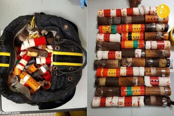 (عکس) کشف 29 فنچ زنده جاسازی شده داخل بیگودی!
